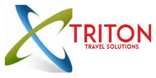 Triton Travel – Travel Company based in Chennai